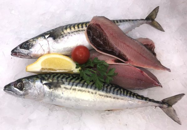 Line caught mackerel