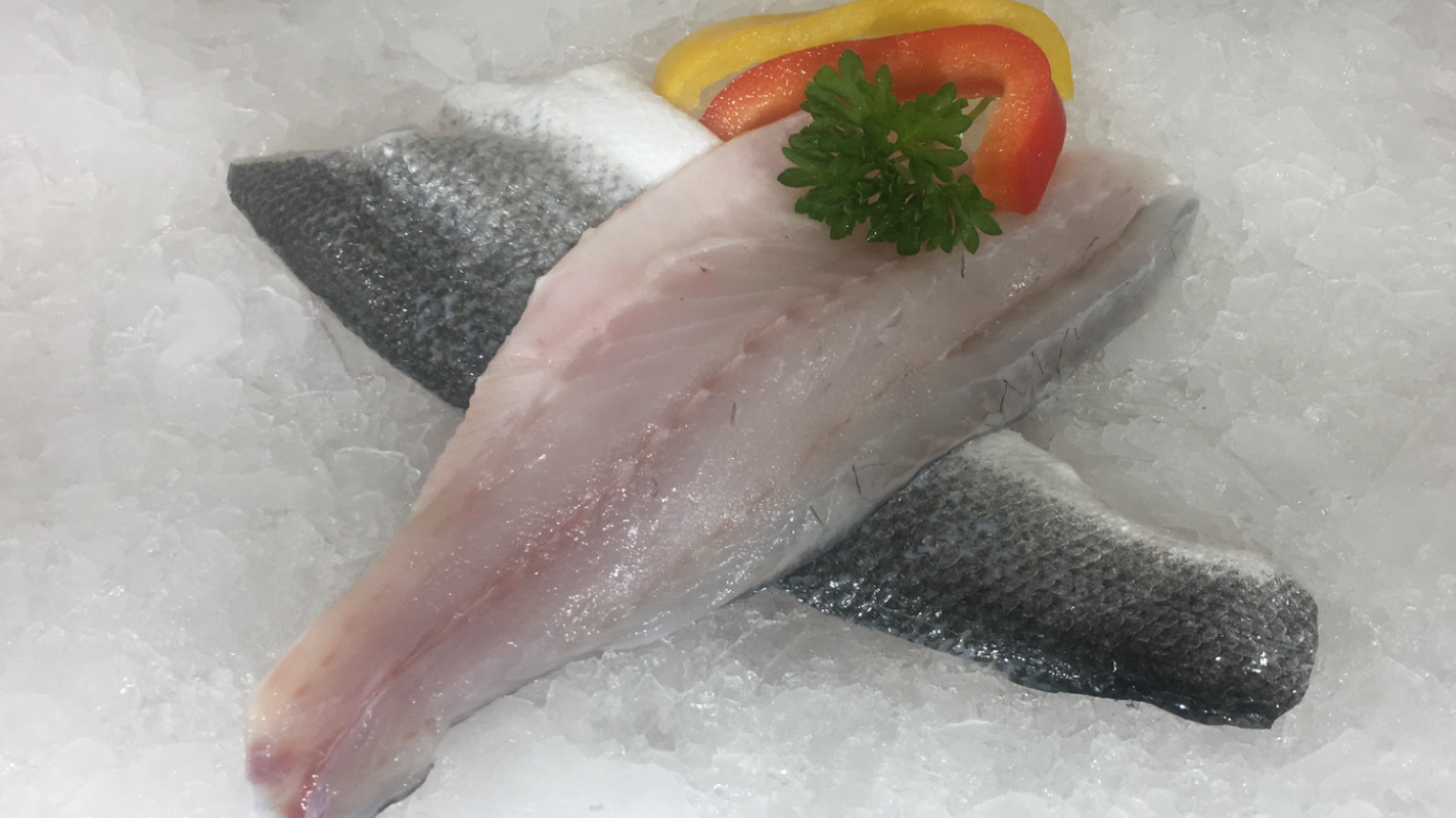 Sea Bass Fillet Farmed Fish High In Omega 3 White